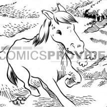 disegno cavallo