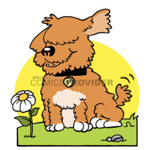 logo cani
